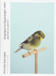 Eingesperrte Vögel singen mehr