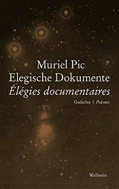 Elegische Dokumente